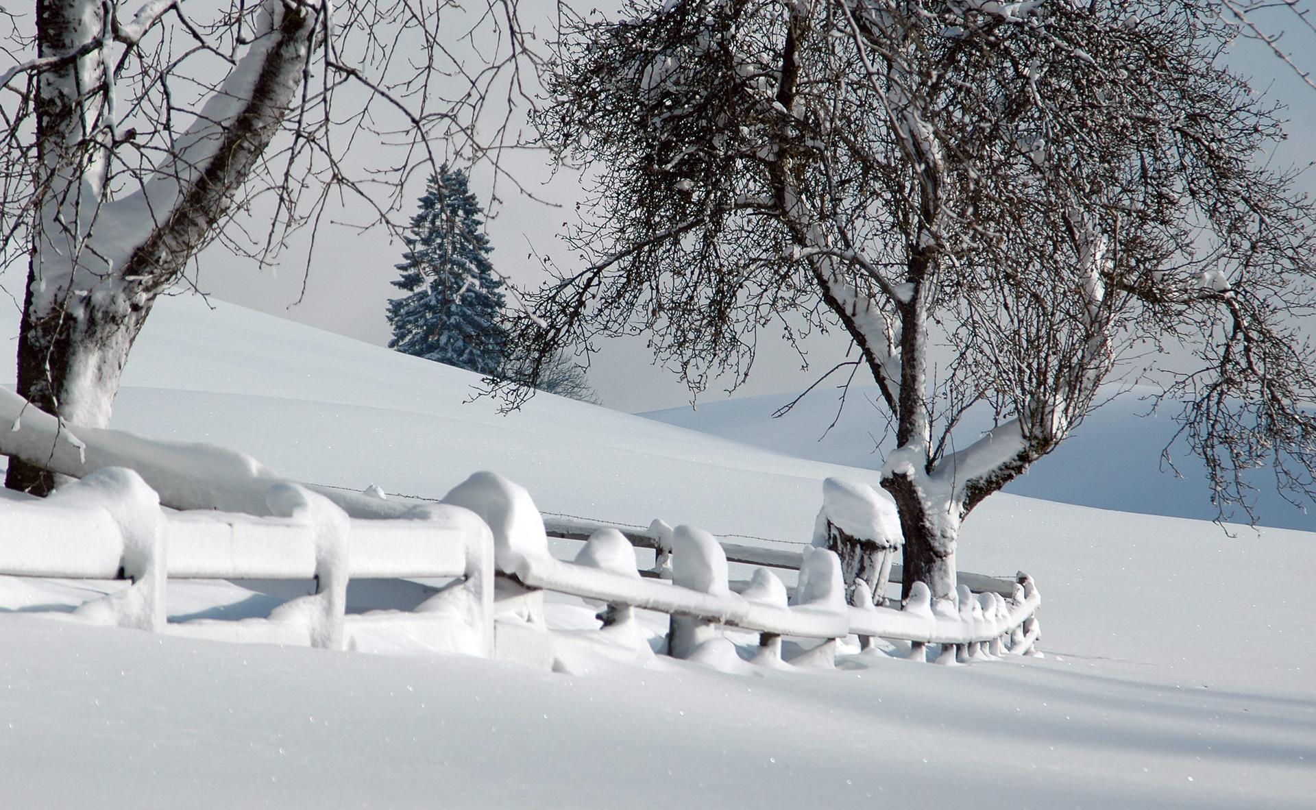 Schnee soweit das Auge reicht