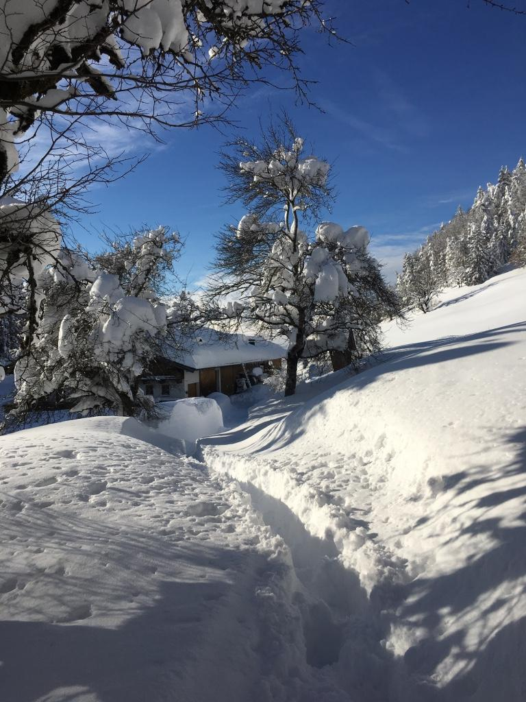 Schnee+Sonne=Glück